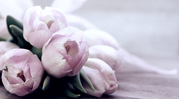 What Type Of Flowers To Get For Different Occasions?